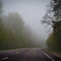 Дорога домой :: Юрий Кулаков
