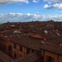 По крышам Сиены... :: Alex S.