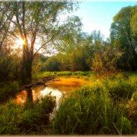 Весенний закат :: Максим Минаков