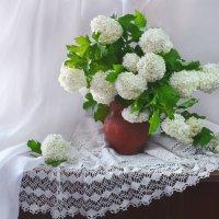 А за моим окном цветёт калина... :: Валентина Колова