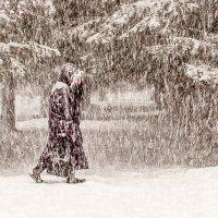 Снегопад :: Антон Тихомиров