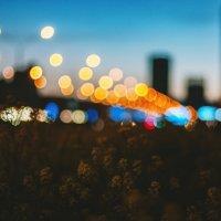 evening city :: Марк Додонов