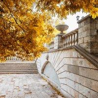 Осень :: Денис Бакаев