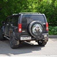 В Клину. :: Oleg4618 Шутченко
