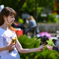 Дети и голуби :: cfysx