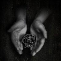 Любовь в твоих руках :: Ната Еременко