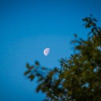 Луна :: Timofey Chichikov