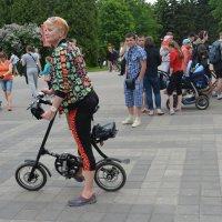 мини транспорт :: Наталия П