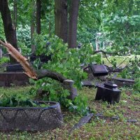 После бури :: Александр Петров
