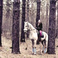 Осенний лес :: Нина