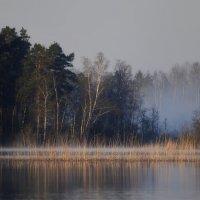 Рассвет у протоки... :: Юрий Цыплятников