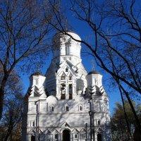 Церковь Усекновения главы Иоанна Предтечи :: Николай Дони