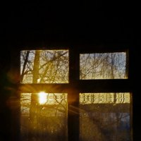 Вечерний свет :: Валерий Симонов