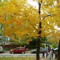 Осень в Москве. :: Александр Атаулин