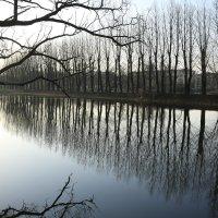 Раннее утро в парке, апрель 2016 года :: Andrey Photorover