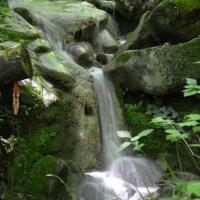 Ручей от водопада :: Максим Доленко