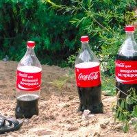 лето - друзья, отдых - Coca-Cola :: Мария Кудрина