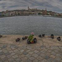 Памятник жертвам Холокоста в Будапеште :: Борис Гольдберг