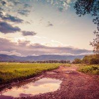 дорога, пусть и не асфальтированная :: Timofey Chichikov