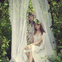 Нежность раннего лета :: Вера Шамраева