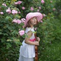 Розовый день :: Вера Шамраева