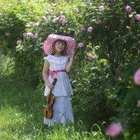 Розовый день...или мечта о скрипке :: Вера Шамраева