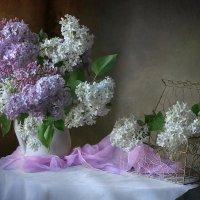 С ароматом сирени... :: lady-viola2014 -