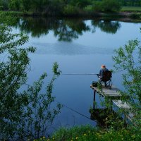На летней рыбалке :: Оксана Лада