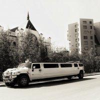 Свадебный лимузин :: Марина Влади-на