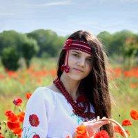С маками :: Olga Volkova