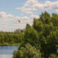 Город, полдень :: Валерий Чернов