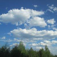 Красоты неба. :: Valentina