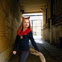 Городские кошки :: Тамара Рубанова