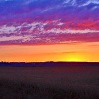 Краски заката. :: владимир