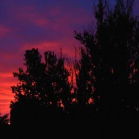 Питерский закат :: ii_ik Иванов