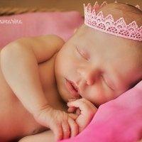 новорожденные :: Евгения Самарина