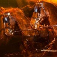 Чуть помедленннее кони :: Светлана Щербакова