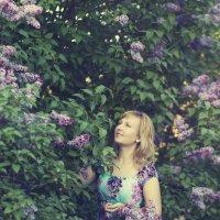 В сиреневом саду :: Мария Курицына