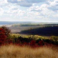 Яркие краски осени :: Дарья Фисун