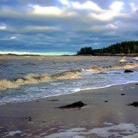 Белое море... :: Валентин Кузьмин