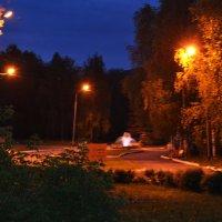 сквер ночью :: Олеся Ушакова