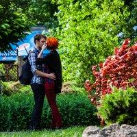 Пара :: Artem Zelenyuk