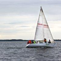 Спортивная яхта на Минском море :: Светлана З