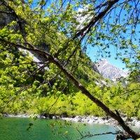 Второе Бадукское озеро :: Ирина Шимкина