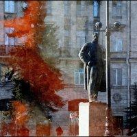 У красной  ели :: sv.kaschuk