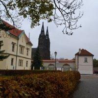 Сумеречная Прага :: Ольга