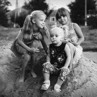 Три подружки :: Сергей Гойшик
