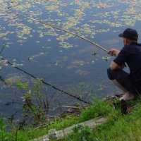 Ловись, рыбка :: Андрей Лукьянов