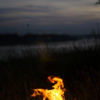 Пламя :: Дарья Медведева