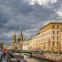 Петербург :: Людмила Финкель